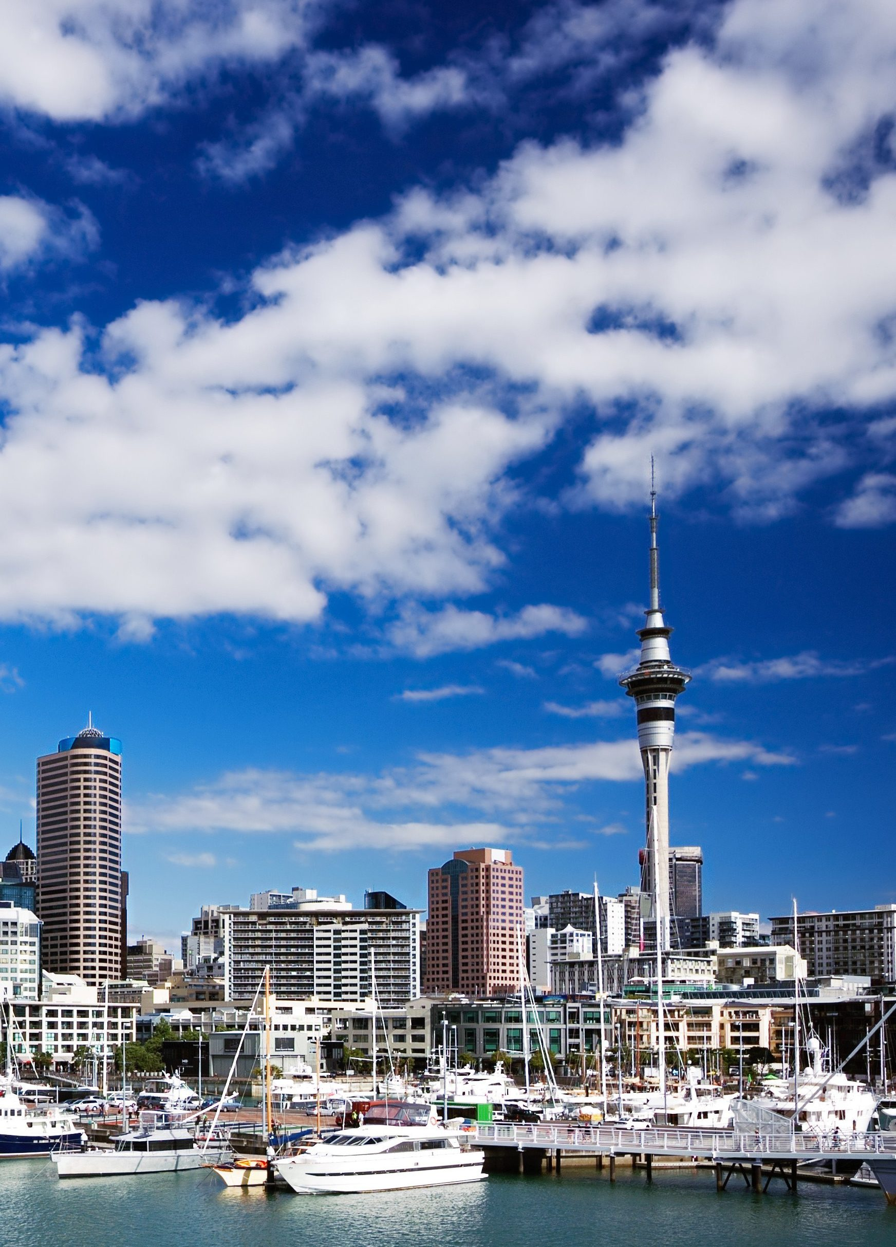 Auckland-e1527733072946